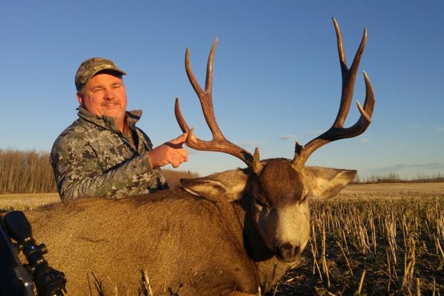 Mule Deer Hunting Alberta Canada Mikes Outfitting