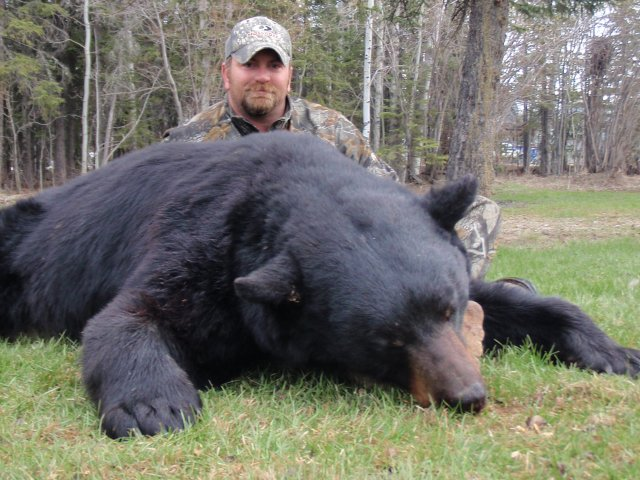 Mike's Outfitting Black Bear Hunts