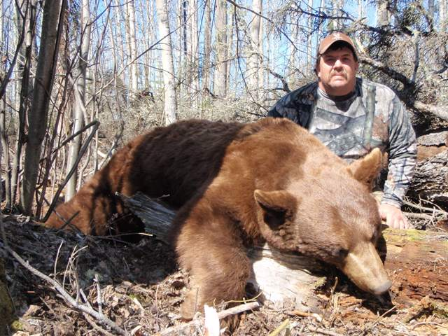 Canada Black Bear Hunts Mike's Outfitting