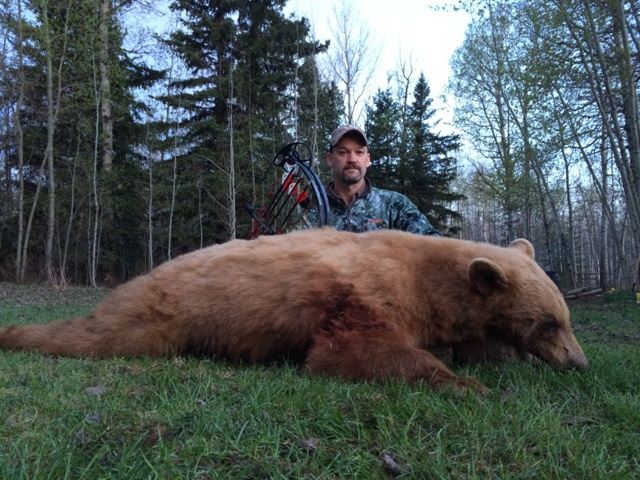Canada Black Bear Hunting Mike's Outfitting