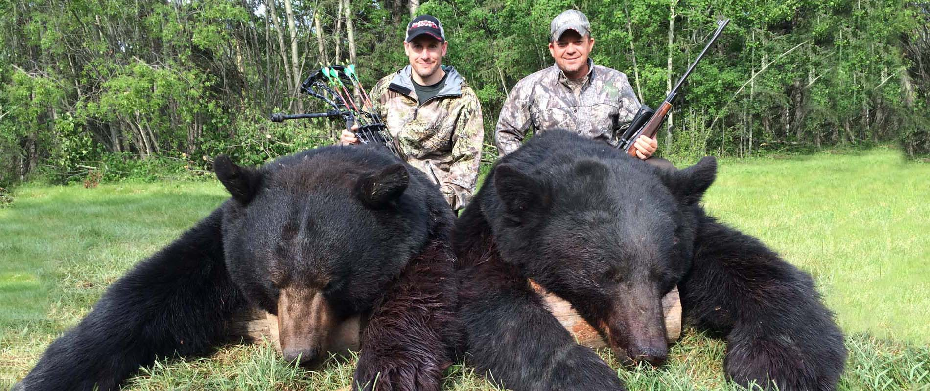 Black Bear Hunting Mikes Outfitting